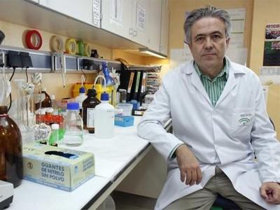 Emilio Alba, presidente de la Sociedad Española de Oncología Médica (SEOM)